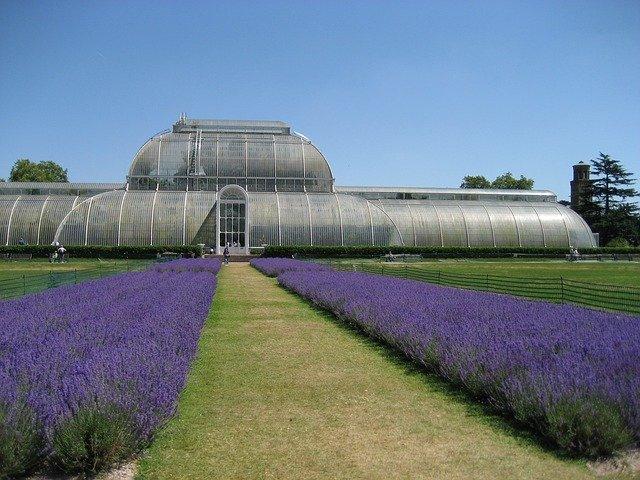 Kew Botanical Gardens