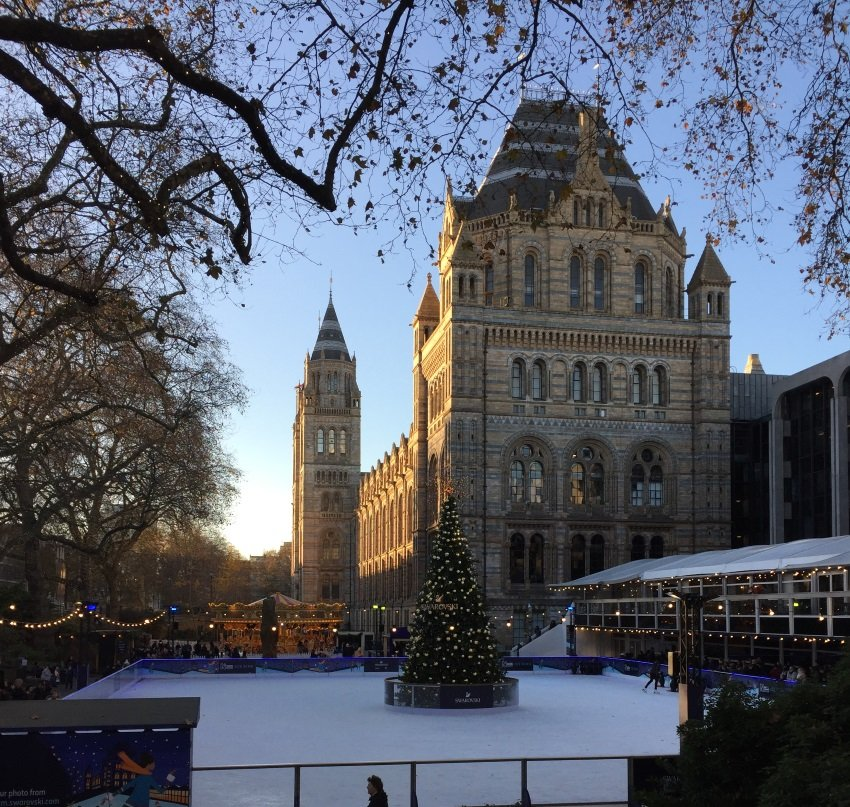 Ice Skating at Natural History Museum