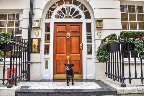 Dog Friendly Hotels in London: Hertford Street