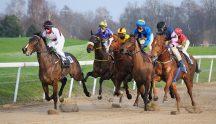 Ascot Horse Race