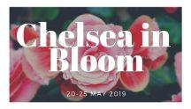 Chelsea in Bloom (1)