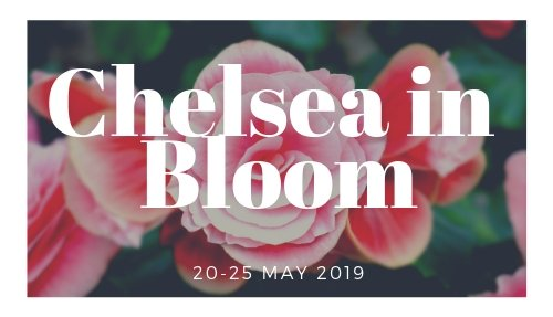 Chelsea in Bloom (1)