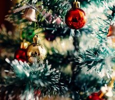 christmas-tree 236