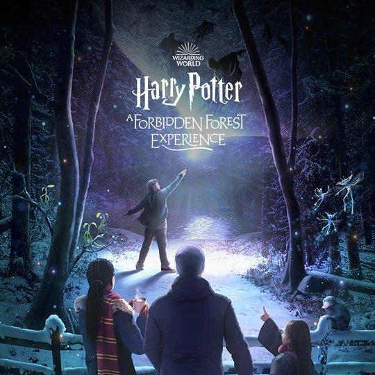 Wizarding World A Forbidden Forest